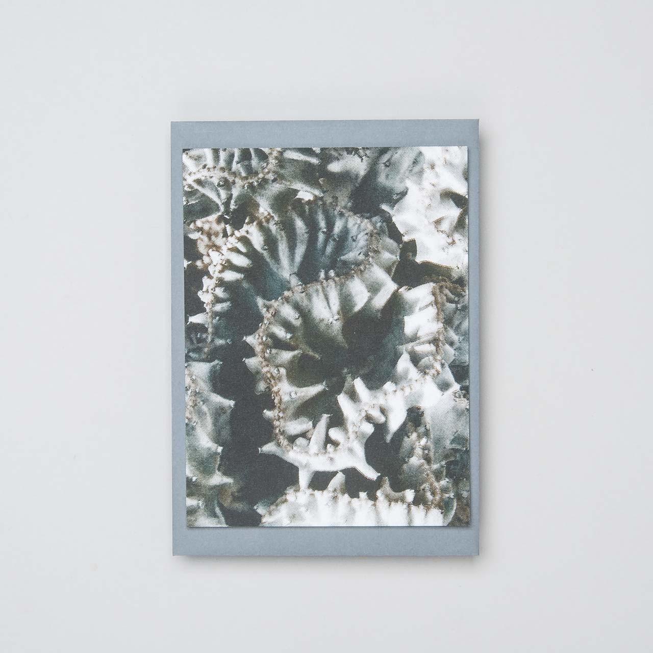 "Riso Karte ""Euphorbia Lactea"""