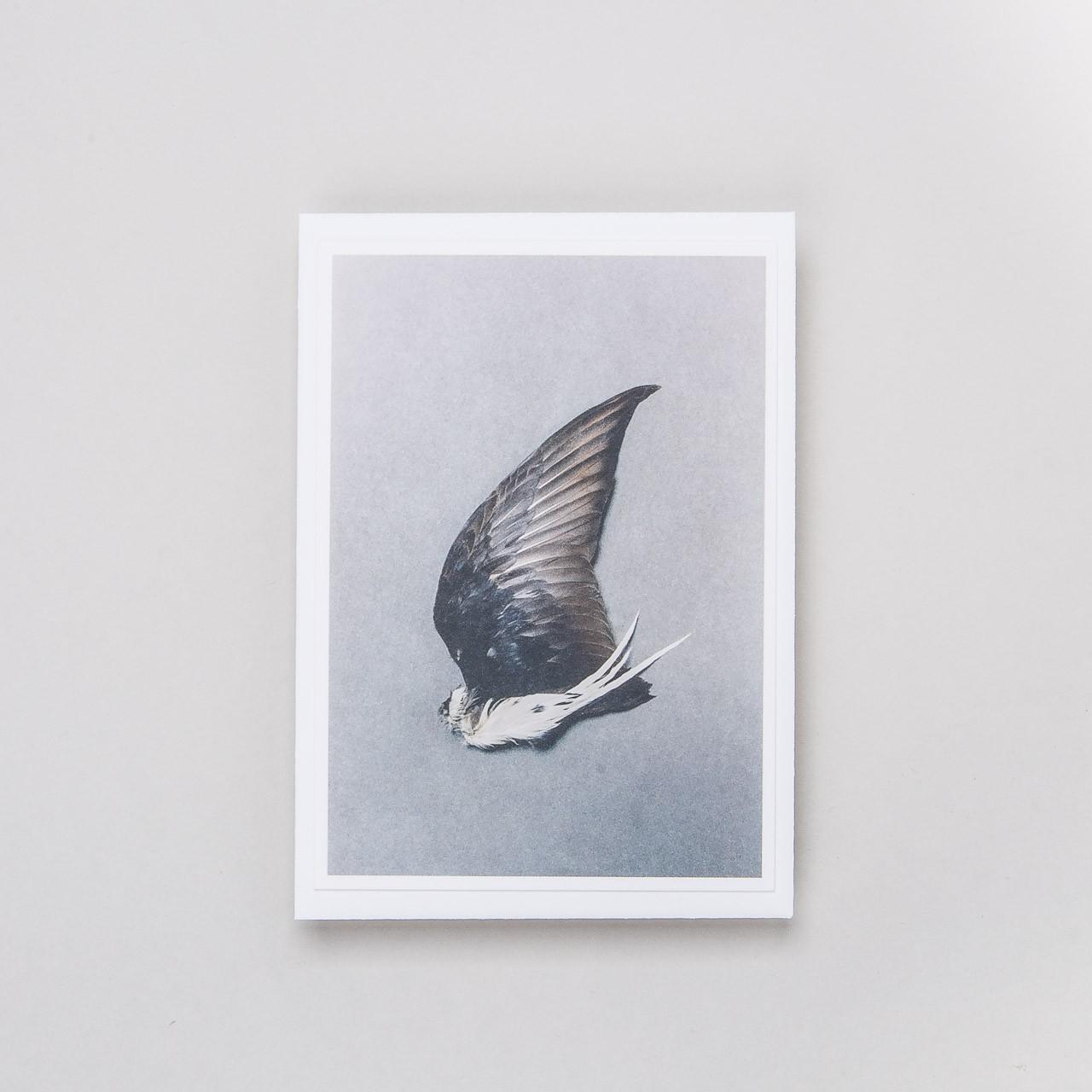 "Grußkarte ""Flügel 4"""
