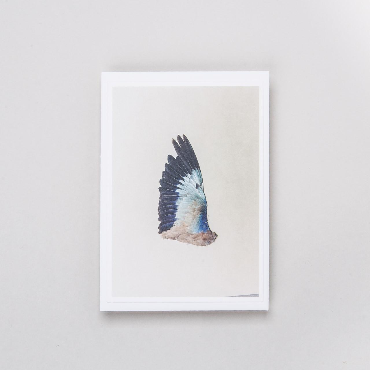 "Siebdruckkarte ""Flügel 6"""