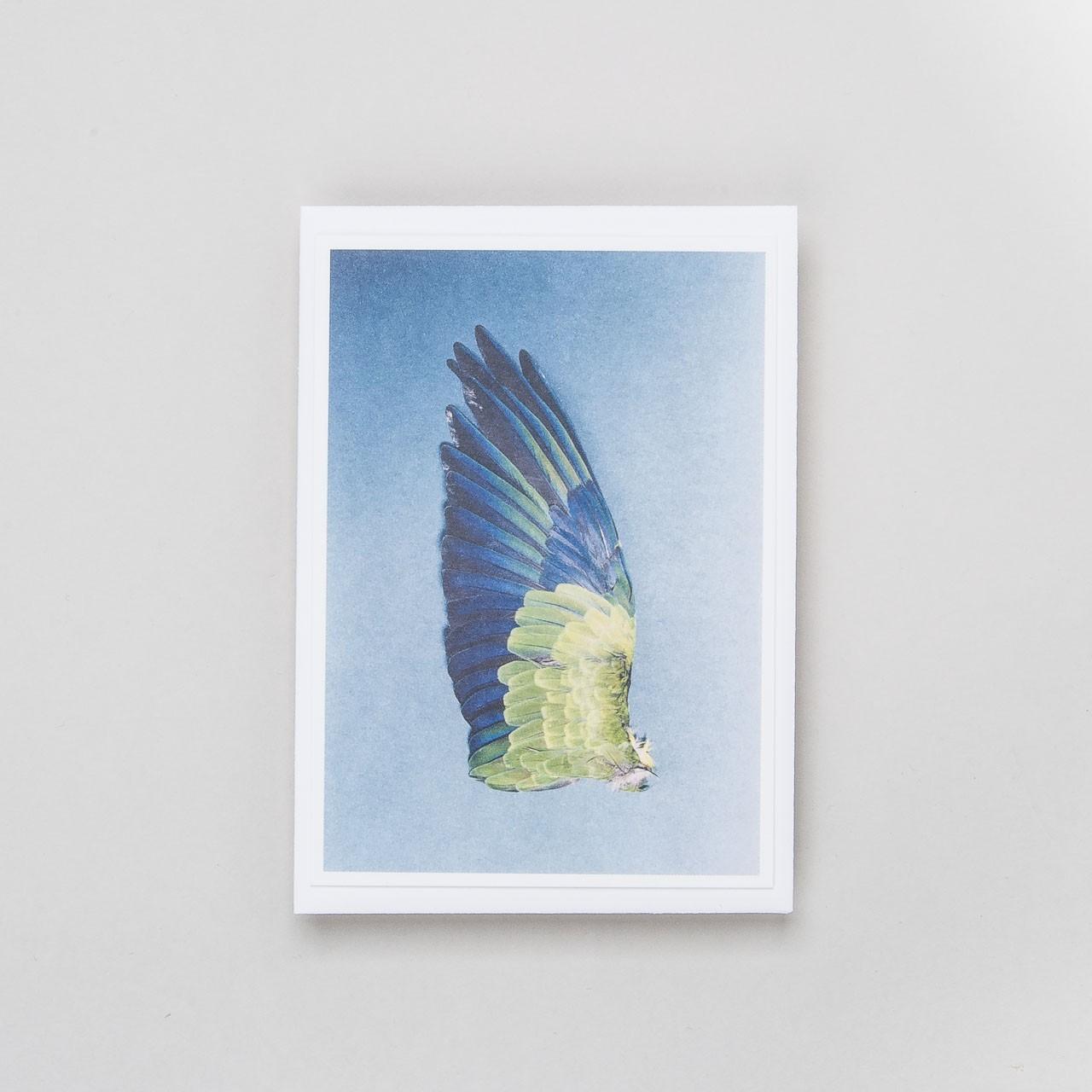 "Grußkarte ""Flügel 8"""